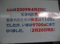 Dscn0868